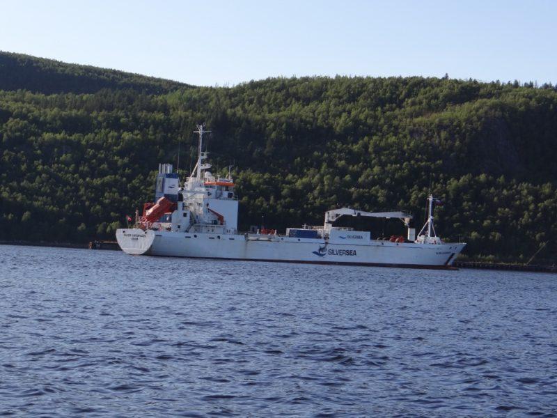 Белый корабль в заливе